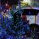 (Video) Espectacular persecución policíaca de vehículo robado, termina en choque en Jardines de Morelos
